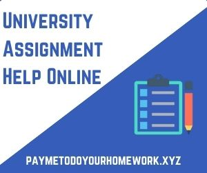 University Assignment Help Online